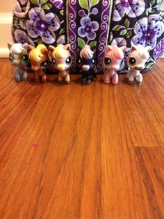 Pet shop pony collection