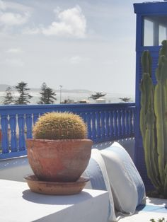 A cooling breeze tames the searing heat of a Moroccan summer and cacti flourish. Create this seaside retreat at home. http://www.maroque.co.uk/