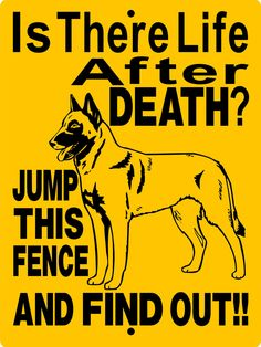 "Belgian Malinois Dog Sign 9""x12"" ""ALUMINUM"" H2698A by animalzrule on Etsy https://www.etsy.com/listing/206840504/belgian-malinois-dog-sign-9x12-aluminum"