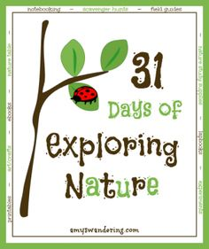 31 Days of Exploring Nature
