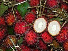 Экзотические фрукты - рамбутан