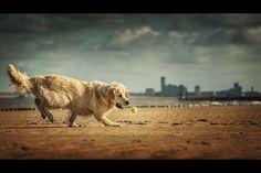 beachball II by Danny Block on 500px