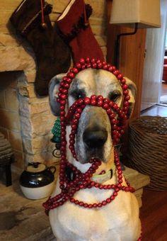 Christmas Beads...
