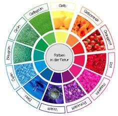 Natürlicher Farbkreis nach Itten für den Kunstunterricht in der Grundschule um einen Bezug zur Natur und den natürlichen Vorkommen der Farben herzustellen.