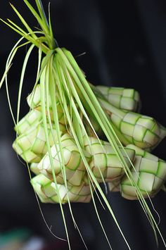 palm frond art how to do it | Ketupat Lebaran by Susi Tanto