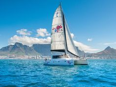 An attractive, luxurious Sailing Catamaran that sails the seas smoothly. This single-decked day charter catamaran sailing vessel is ideal for Clifton Cruises and Day Charters. V&a Waterfront, Sailing Catamaran, Yacht Cruises, Cruise Boat, Kayak Adventures, Best Boats, Charter Boat, Tug Boats, Windsurfing