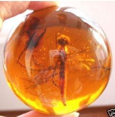 Big Beautiful sphere encrusted dragonfly ornament tibet Amber ball