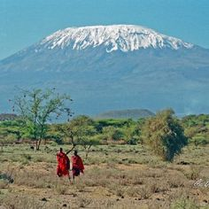 Kilimanjaro - photo by Laura Teran, Laura Teran Wildlife & Travel Photography.