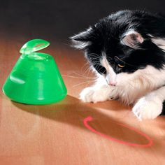 Multipet Ba-Da-Beam Rotating Laser Cat Toy - Drive Your Cat Nuts! - Find out more what Cat Toys is for your cats at catsincare.com!