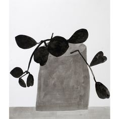 "Jonas Wood  Black and White Plant, 2009  ink on paper  21 1/4"" x 18"""