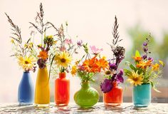 Calendula, Beautiful Morning, Bottle Art, Cut Flowers, Art Projects, Wedding Flowers, Glass Vase, Places To Visit, Floral