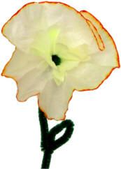 How about a coffee filter daffodil?  These are also cute made with cupcake papers.