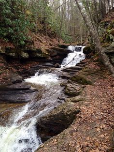 Worth pulling over for, Pipestem Falls. #visitwv