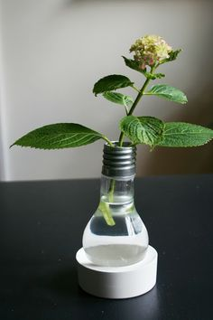 Fire and Flowers: DIY Light Bulb Vase + Holder