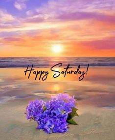 Weekend Days, Happy Weekend, Happy Saturday, Good Day, Good Night, Good Morning, Happy Day Quotes, Saturday Quotes, Quote Of The Day