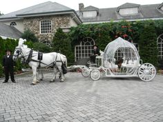 Our Cinderella Carriage filmed for The Big Day at the Crystal Plaza, Livingston NJ will air October 24 2013 on TLC.  Hope we make the show this time.