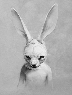 This Reminds Me Of Donnie Darko Scary Art Weird Rabbit