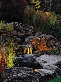 Outdoor Lighting - All Oregon Landscaping