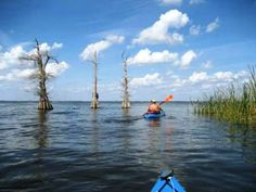 Paddle Dora Canal - Kayak, Canoe