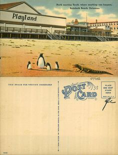 From the George and Irene Caley Postcard Collection donated to the Delaware Public Archives.