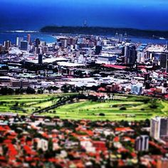 Durban South Africa Durban South Africa, One And Only, Hibiscus, Dolores Park, Coast, African, Travel, Viajes