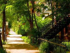 Plateau Mont-Royal O Canada, Canada Travel, After All These Years, Architecture, City, Nature, Photos, Tray, Places