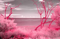 Νατάσα Γκουτζικίδου: Αν όλη μας η ζωή ήταν ροζ
