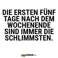 #stuttgart #mannheim #trier #köln #koblenz #mainz #ludwigshafen #fun #spaß #sprüche #spruchdestages #montag #wochenende #tage #schlimm #horror Horror, Funny, Mainz, Trier, Mannheim, Stuttgart, Ha Ha, Hilarious, Humor