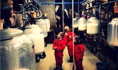 Boer Johan helpen tijdens het melken in de melkput van FarmCamps 't Looveld. Hooi Hooi! Kids, Young Children, Boys, Children, Boy Babies, Child, Kids Part, Kid, Babies