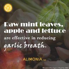 Natural garlic breath remedies