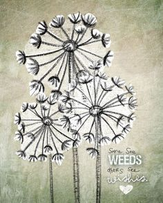 Some see weeds, others see wishes.  Love Jessica's prints on canvas.