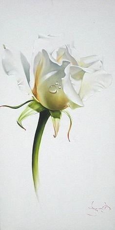 anastgal | Розы художника Василия Лучкива (42 репродукции)