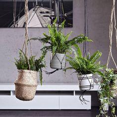 Hanging Baskets, Natural Or Black