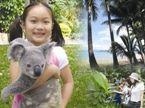 Koala #travel #ecotourism #Queensland #Australia