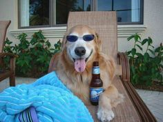 Summertime . . . and the livin' is easy!