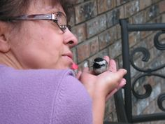 """A bird in your hands brings You a Lucky Day """"Cute Chickadee"""""""