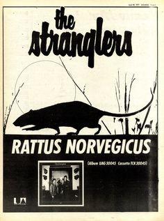 30/4/1977 The Stranglers, Rattus Norvegicus.  Best album ever.  Best band ever!