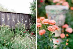 McGill_Rose_Garden_Wedding_Charlotte_50