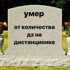 Russian Quotes, Russian Memes, Cute Memes, Funny Jokes, Dont Touch My Phone, Hello Memes, Happy Memes, Work Memes, Mood Pics