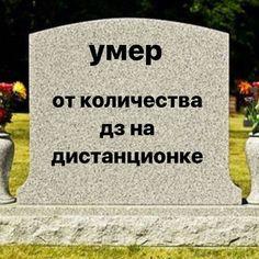 Funny Mems, Haha Funny, Funny Jokes, Russian Quotes, Russian Memes, Reaction Pictures, Funny Pictures, Dont Touch My Phone, Hello Memes