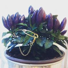 Golden Tail Bracelet Gold-Plataed Brass Tails by SchadelJewelry