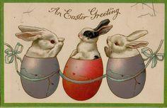 Vintage Sweet Bunny c1910 Easter Greetings Postcard Victorian #Easter