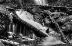 Below Anna Ruby Falls In Black And White. Near Helen, Georgia