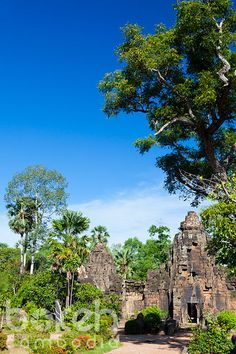 Ancient Khmer temple of Ta Prohm | Takeo Province, Cambodia