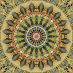 Christine Bässler - Mandala erinnere Dich an mich - Poster oder Leinwanddruck