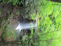 Cucumber falls... one of the best hiking places in Western Pa