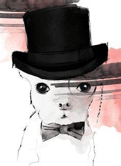 Illustration Dog in hat