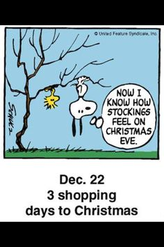 Now I Know How Stockings Feel On Christmas Eve - Snoopy and Woodstock Hanging Upside Down on Tree Branch Snoopy Cartoon, Snoopy Comics, Peanuts Cartoon, Peanuts Snoopy, Peanuts Comics, Peanuts Christmas, Charlie Brown Christmas, Charlie Brown And Snoopy, Christmas Quotes