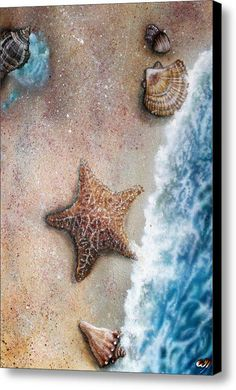 seashells and starfish resting on the beach Vacation Packing, Sea Art, Sea Shells, Serenity, Fine Art America, Life Is Good, Caribbean, Coastal, Tropical