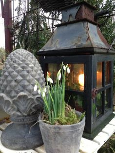 Mrs. Pedersen's garden-lantern vignette with potted Snowdrops and pineapple finial